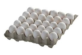 30pcs egg